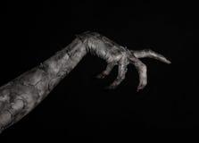Czarna ręka śmierć chodzący nieboszczyk, żywego trupu temat, Halloween temat, żywy trup ręki, czarny tło, mamuś ręki zdjęcie royalty free