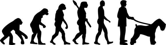 Czarna rosjanina Terrier ewolucja ilustracji