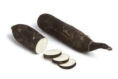 Czarna rzodkiew z plasterkami Fotografia Stock