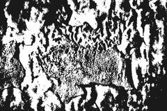 Czarna słoista tekstura na bielu Obrazy Stock