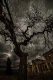 Czarna sylwetka kobieta w okropnych drzewach z gałąź przeciw tłu okropne ruiny i hoodie obraz stock