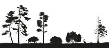 Czarna sylwetka lasowi drzewa na białym tle Panorama las z zwierzętami Krajobraz dzika natura ilustracja wektor
