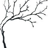 Czarna sylwetka nagi drzewo Zdjęcia Stock