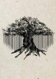 Czarna sylwetka stary banyan drzewo odizolowywający na beżowym ryżowego papieru tle Fotografia Royalty Free
