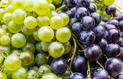 czarna winogrono green Zdjęcia Stock