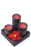 Czarna zdrój świeczka z czerwonym kwiatem w czarnym drewna pudełku Zdjęcia Royalty Free