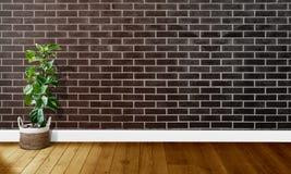 Czarne brąz ściany z cegieł z drewnianymi podłogami i drzewem z naturalnym światłem Dla tło fotografii fotografia royalty free