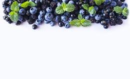 Czarne i Błękitne jagody odizolowywać na bielu Dojrzałe czarne jagody, czernicy z mennicą na białym tle Obraz Royalty Free