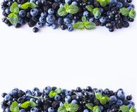Czarne i Błękitne jagody odizolowywać na bielu Dojrzałe czarne jagody, czernicy z mennicą na białym tle Fotografia Royalty Free