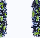 Czarne i Błękitne jagody odizolowywać na bielu Dojrzałe czarne jagody, czernicy z mennicą na białym tle Jagody przy granicą ima Zdjęcie Royalty Free