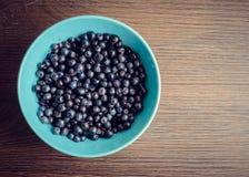 czarne jagody świeżo podnosić Obraz Royalty Free