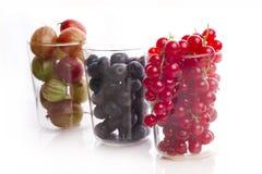 Czarne jagody, agresty i czerwony rodzynek, Obraz Stock
