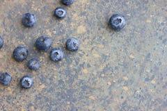 Czarne jagody czarne jagody świeżo podnosić Soczyste i świeże jagody Obrazy Stock