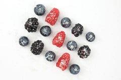 Czarne jagody, czernicy, agresty i malinki, kropią Obraz Stock