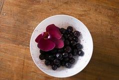 Czarne jagody dekorować z menchia kwiatem Zdjęcie Royalty Free