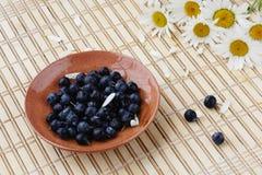 Czarne jagody i kwiaty Fotografia Royalty Free