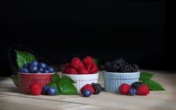 Czarne jagody, malinki i czernicy, obrazy stock
