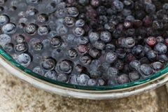 Czarne jagody Moczy w Szklanym pucharze woda Obraz Royalty Free