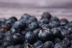czarne jagody organicznie Fotografia Stock
