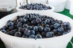 Czarne jagody przy produkt spożywczy stojakiem zdjęcie stock