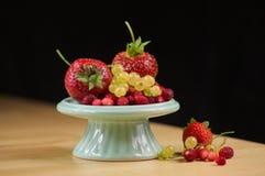 Czarne jagody, truskawki, redcurrant i dzikie truskawki, zdjęcia royalty free