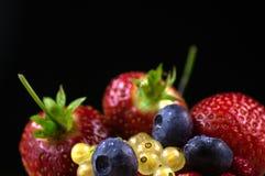 Czarne jagody, truskawki, redcurrant i dzikie truskawki, obraz royalty free