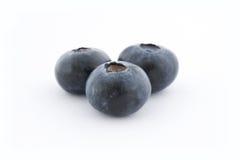 czarne jagody trzy Fotografia Royalty Free
