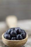 Czarne jagody w łyżce na drewnianym tle, zakończenie Obrazy Royalty Free