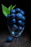 Czarne jagody w małym szkle Obraz Stock