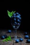Czarne jagody w małym szkle Fotografia Royalty Free