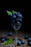 Czarne jagody w małym szkle Zdjęcia Stock