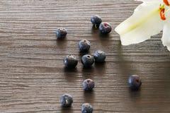 Czarne jagody z białą lelują Zdjęcie Stock