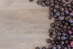 Czarne jagody z liśćmi Zdjęcie Royalty Free