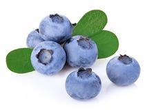 Czarne jagody z liścia zakończeniem odizolowywającym na bielu Fotografia Stock