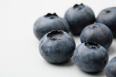 czarne jagody zamykają krańcowy świeży up Obrazy Stock