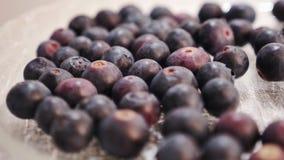 Czarne jagody zamykają up na płodozmiennym spodeczku zdjęcie wideo