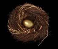 czarne jaja gniazdo Obraz Royalty Free