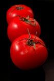 czarne pomidorów Obraz Royalty Free
