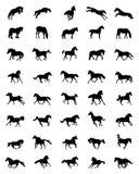 Czarne sylwetki konie ilustracja wektor