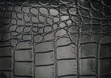 Czarnego gada rzemienna tekstura dla z tłem Obraz Royalty Free