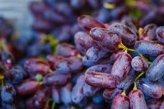 Czarnego gronowego background/ciemni winogrona, błękitni winogrona, Czerwony winogrono sprzedawali w theThai rynku zdjęcia royalty free