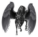 Czarnego pegaza Oskrzydlony koń Fotografia Royalty Free