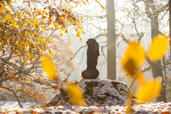 Czarnego psa obsiadanie w jesień lesie Obrazy Stock