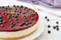 Czarnego rodzynku cheesecake obrazy stock