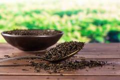 Czarnej herbaty książe herbaty popielaty pole w plecy fotografia royalty free