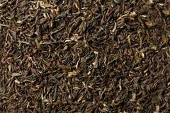 Czarnej herbaty luźni wysuszeni darjeeling herbaciani liście Zdjęcia Stock