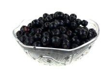 Czarnej jagody Świeży Ukradziony naczynie Obrazy Royalty Free