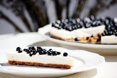 czarnej jagody cheesecake Zdjęcie Royalty Free