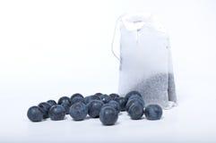 Czarnej jagody herbata Obraz Stock