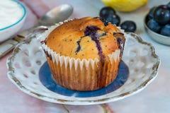Czarnej jagody i cytryny muffins Obrazy Royalty Free